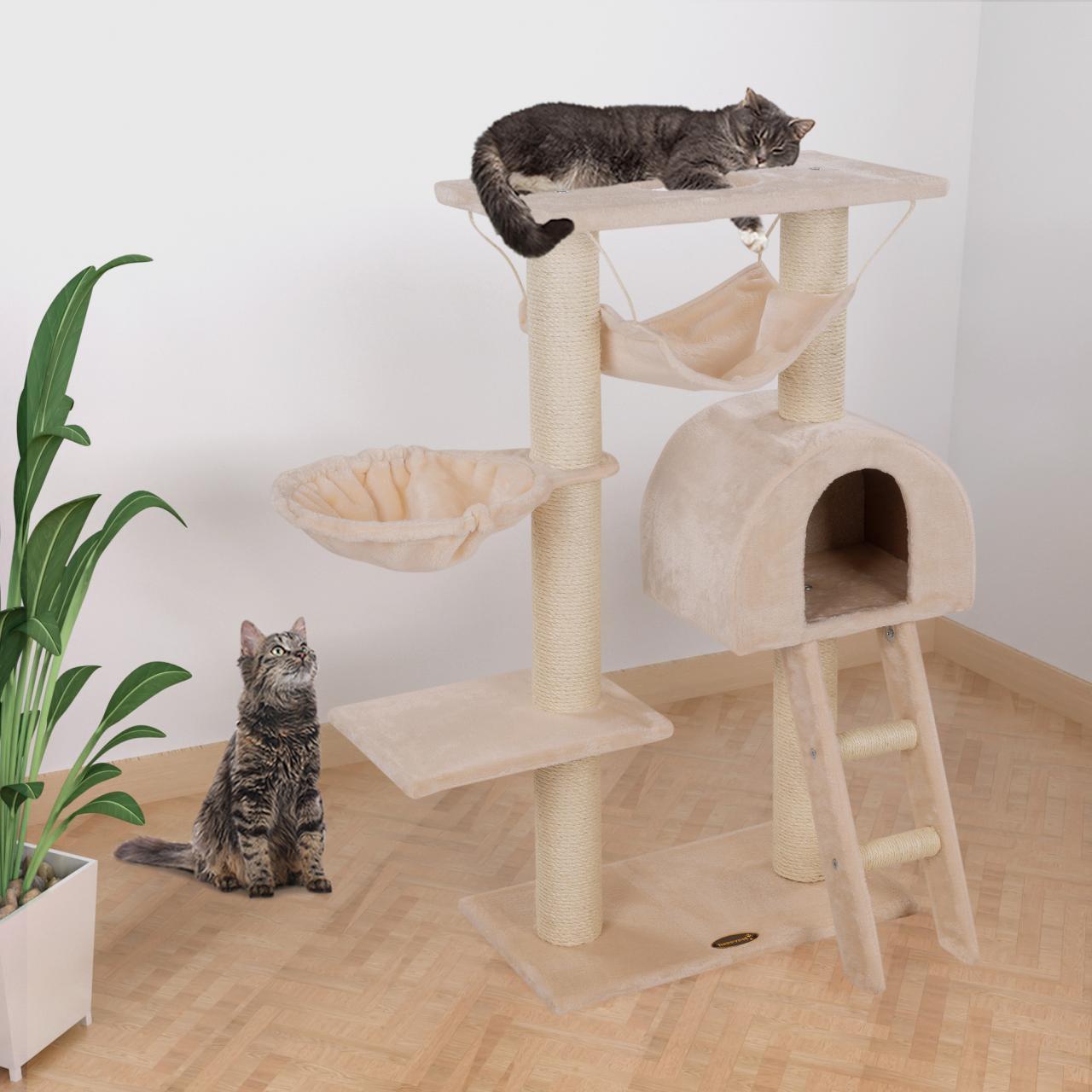 CAT018_05.jpg